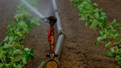 services-irrigation-01-400x226