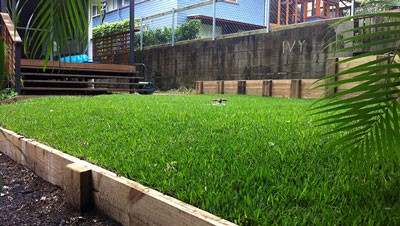 services-turfing-400x226